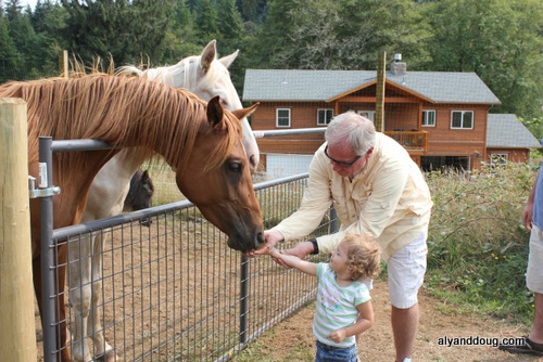 Brynn fed the horse one grain at a time.