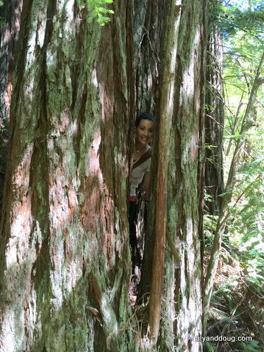 where's Aly?